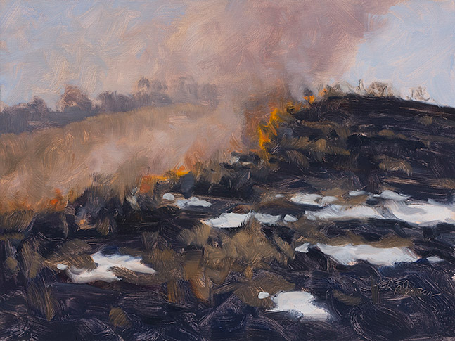 Painting of Winter Burn 1