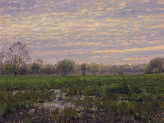 Painting of Spring Lake Wetland