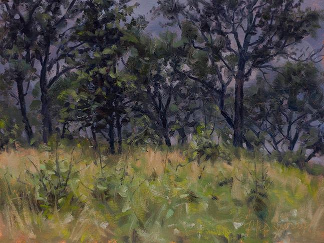 Painting of Black Oaks, Pembroke Savanna, Kankakee County, Illinois, by Philip Juras.
