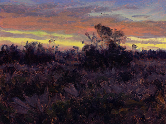 Painting of Muhly Before Sunrise