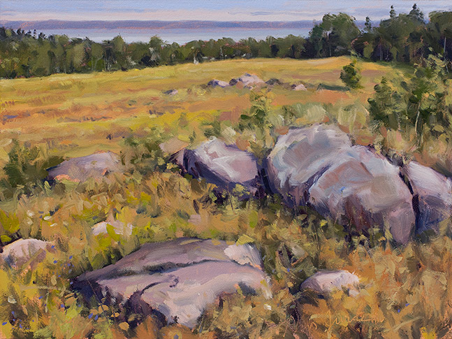 Painting of Boulders in a Blueberry Field, Bog Brook Preserve, Cutler, Maine, by Philip Juras.