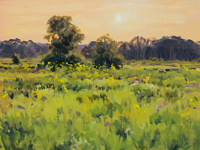 Painting of a late afternoon impression, Middlefork Savanna, Lake County, Illinois.