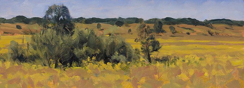 Study of View of Nachusa Grasslands, Illinois.