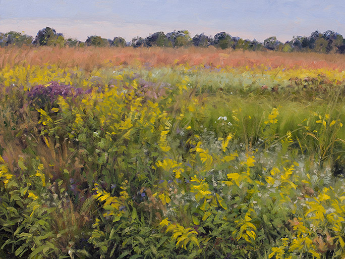 Painting of Grigsby Prairie, September in Lake County, Illinois.