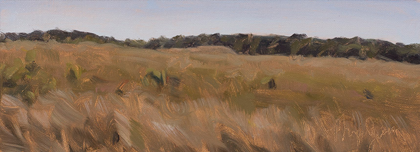 Painting of View of Nachusa Grasslands